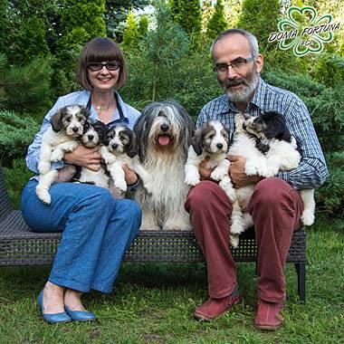 Doma Fortuna FCI Zapraszamy na stronę internetową naszej hodowli psów rasowych: